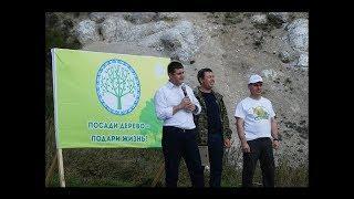 На территории Архангельского лесничества прошла Всероссийская акция «Живи, лес!»