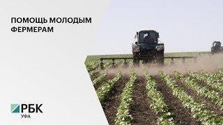 """Выпускникам аграрных вузов в РБ выплачиваются """"подъёмные"""" в размере 500 тыс руб."""