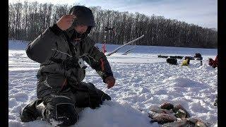 РАДИ ТАКОЙ РЫБАЛКИ СТОИЛО СЮДА ПРОБИВАТЬСЯ!!!Крупный окунь,лещ,язь. Рыбалка на комбайны,безмотылка.