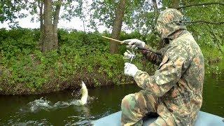 Река, где полно щуки и голавля. Рыбалка на спиннинг в июне 2018