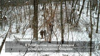 UTv. Новости запада Башкирии за 26 ноября