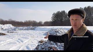 Жители Благовещенска жалуются на неприятный запах от птицефабрики