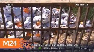 Роспотребнадзор предложил запретить уничтожение продуктов питания - Москва 24