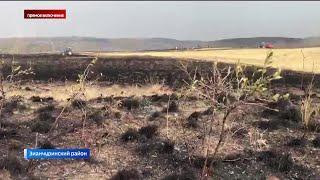 """Корреспондент """"Вестей"""" вступил в ряды волонтеров, которые тушат лесные пожары в Башкирии"""