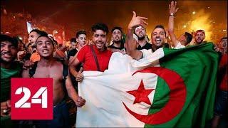 Футбол сплотил: победу Алжира праздновали выходцы из Северной Африки и Ближнего Востока - Россия 24