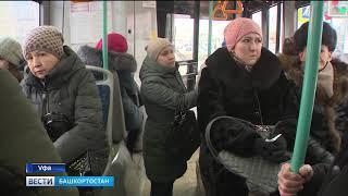 В Уфе увеличили количество автобусов на популярный маршрут