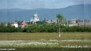 Власти Закарпатья потребовали создать венгерский район