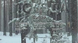 Погода в Сибае сегодня 2 февраля 2020. На завтра, неделю