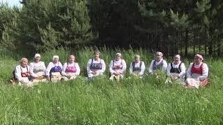 «То ли в Колбино, то ли в Рязани». Народный фольклорный ансамбль «Ручейки»