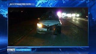 В Стерлитамакском районе водитель насмерть сбил двух пешеходов