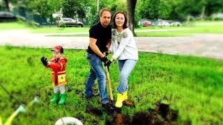 Посади дерево с уралом