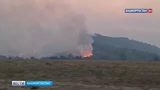 В Башкирии продолжают гореть леса - ВИДЕО