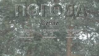 Погода в Сибае сегодня 11 февраля 2020. На завтра, неделю