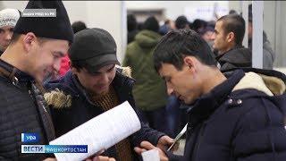 Мигрантам продлят все необходимые документы