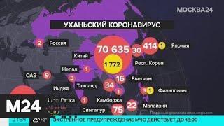 В Китае заявили, что пик распространения коронавируса пройден - Москва 24