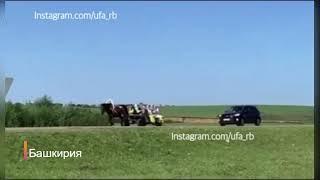 Иномарка столкнулась в повозкой в Башкирии | ДТП