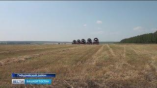 В Башкирии проходят зональные «Дни поля»