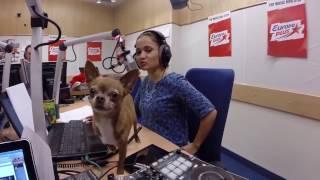 В Давлеканово скоро появится новая радиостанции