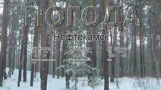 Погода в Нефтекамске сегодня 26 января 2020. На завтра, неделю