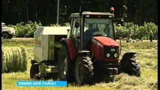 В 18-ти районах Башкортостана полным ходом идет заготовка кормов