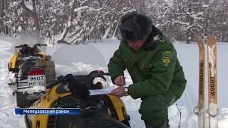 """Тем временем в национальном парке """"Башкирия"""" начали пересчитывать животных"""