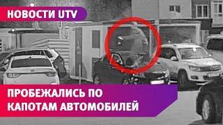 В Уфе подростки пробежались по припаркованным машинам