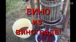 Домашнее вино из винограда!Часть-2!