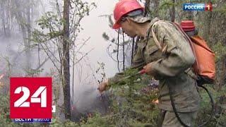 Следственный комитет возбудил первое уголовное дело по факту масштабных пожаров - Россия 24