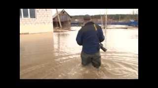 Оперативная сводка + потоп в д.Лепешки