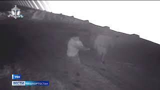 Пулей разорвало глаз: в уфимском Затоне расстреляли 26-летнего парня