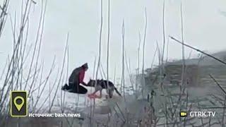 В Стерлитамаке мужчина спас тонущую собаку