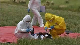 Более 15 тысяч жителей в Башкирии могут быть носителями коронавируса