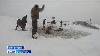В Башкирии с помощью крана вытащили провалившийся под лед табун лошадей