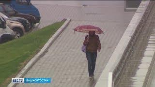 На Башкирию надвигается похолодание и дожди со снегом