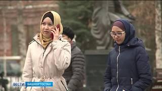 Три района Башкирии замело снегом