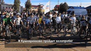 UTV. Новости центра Башкирии за 14 мая