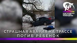 В Новгородской области страшная авария унесла жизнь восьмилетнего мальчика