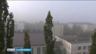 В Башкирии действует предупреждение МЧС о сильном ветре и грозах