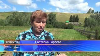 Шежере в д. Старокангышево