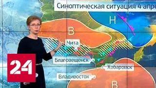 """""""Погода 24"""": Благовещенск окутало дымом из Китая"""