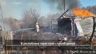 UTV. Новости запада Башкирии за 23 апреля (Буздяк, Бижбуляк, Киргиз-Мияки, Давлеканово)