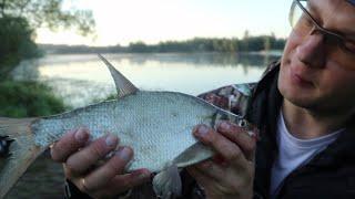 Ночная рыбалка ОХОТА за ЛЕЩЁМ вторая часть
