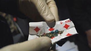UTV. В 2019 году в Башкирии задержано 30 несовершеннолетних с наркотиками