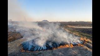 Крупный природный пожар в Ишимбайском районе сняли на видео