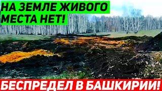 Обнаружена ещё одна незаконная разработка золотодобытчиков в Башкирии!