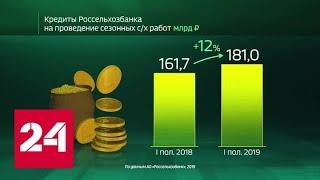 Россия в цифрах. Кредитование Россельхозбанком сезонных работ - Россия 24