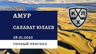 Амур - Салават Юлаев 28.01.2020 / Точный прогноз